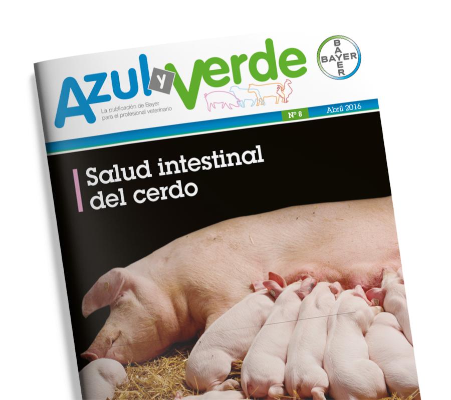revistas_impresas_thumb